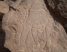 ENGRAVINGS OF OUED DJERAT              ジェラト川の刻画