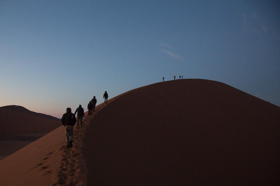 Namib2015-14