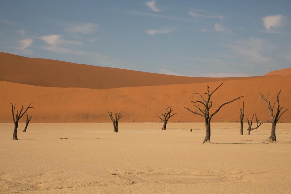 Namib2015-20