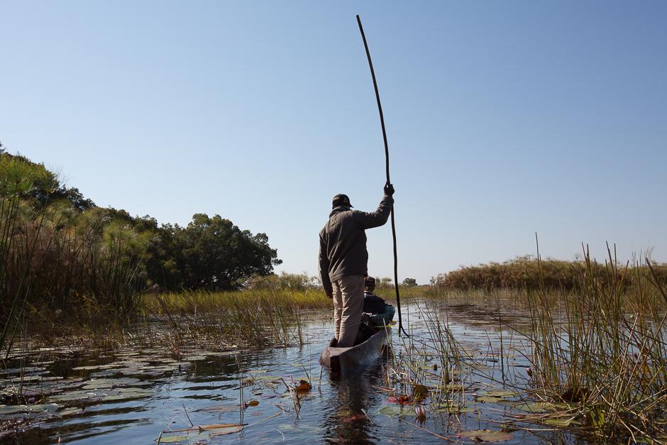 Okavango2015-01