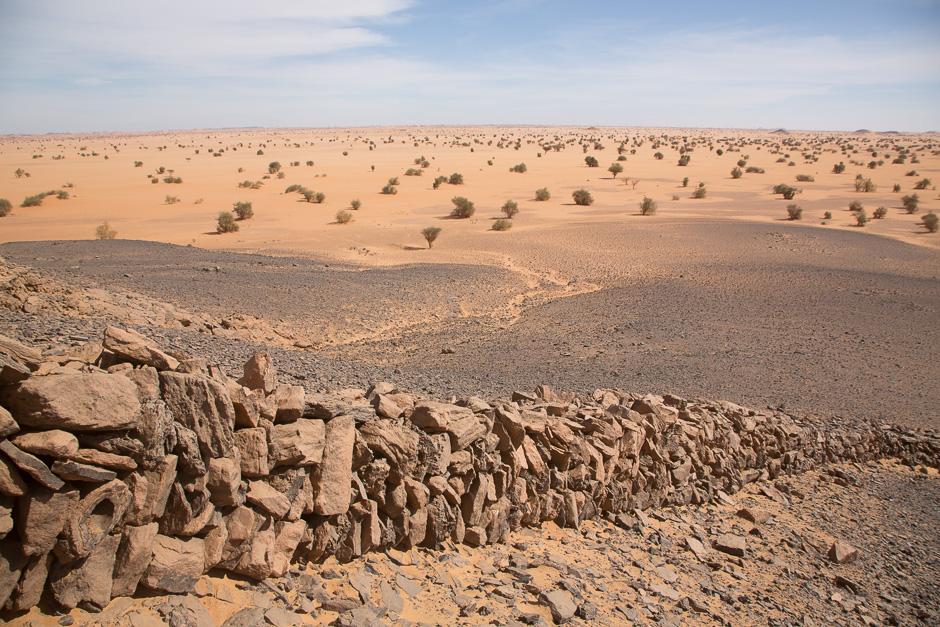 Nubia2015-23