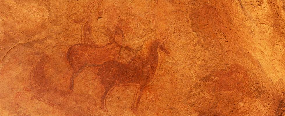 AntelopesTamiritTN