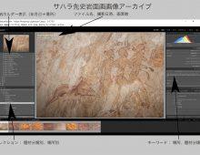 サハラ先史岩面画のアーカイブを寄贈します